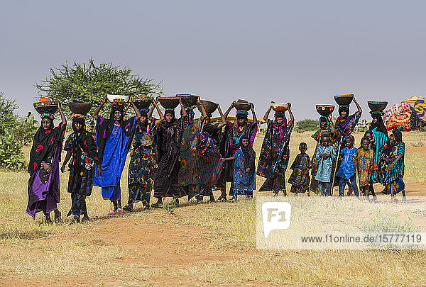 Local women arriving on the Gerewol festival  courtship ritual competition among the Wodaabe Fula people  Niger  West Africa  Africa