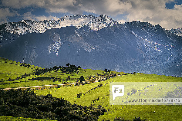 Rural scene with mountains behind  Kaikoura  Gisborne  New Zealand