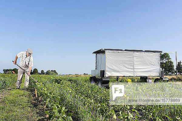 Crops and flowers on agricultural site being monitored by robot in pixelfarming research