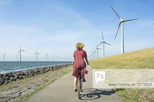Mädchen radelt zwischen Onshore- und Offshore-Windpark  Urk  Flevoland  Niederlande