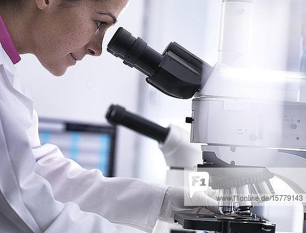 Wissenschaftler betrachtet menschliche Probe auf Glasträger unter dem Mikroskop