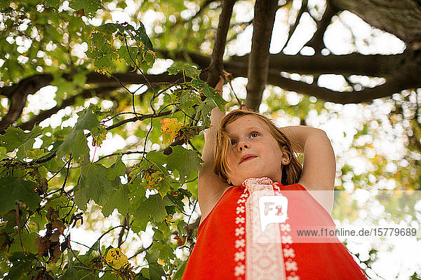 Girl hanging on to tree branch