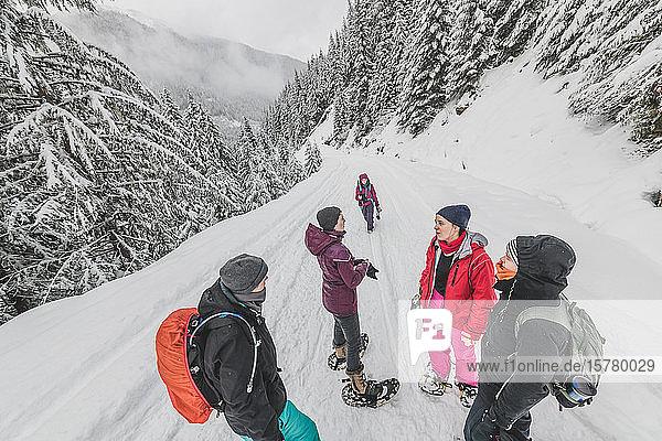Eine Gruppe von Freunden wandert im Winter in einem kanadischen Wald.