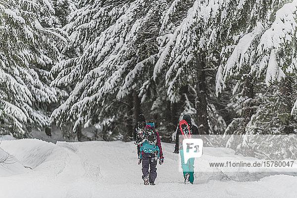 Eine Gruppe von Freunden wandert im Winter durch einen kanadischen Wald.
