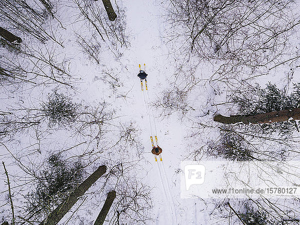 Aerial view of couple with skis in the forest  Leningrad region  Russia