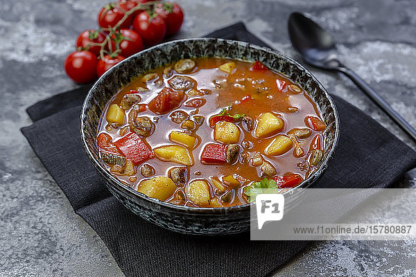 Bowl of sausage goulash with potatoes  tomatoes  bell peppers  leek and parsley
