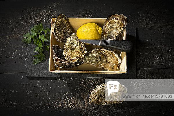 Frische Austern und Zitrone