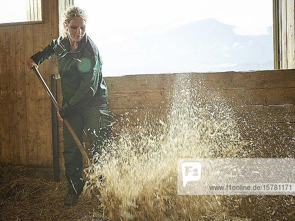 Bäuerin  die auf einem Bauernhof mit Stroh arbeitet