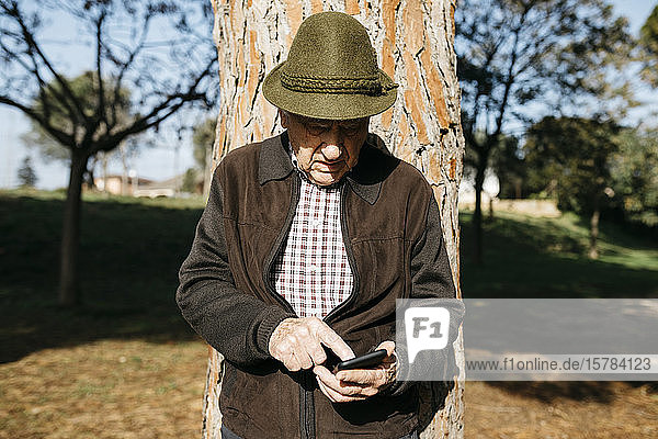 Old man using smartphone  leaning on tree trunk