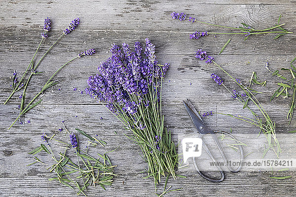 Bunch of lavender (Lavandula angustifolia) on wooden table