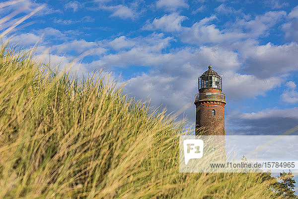 Deutschland  Mecklenburg-Vorpommern  Hohes Gras gegen Leuchtturm Darsser Ort