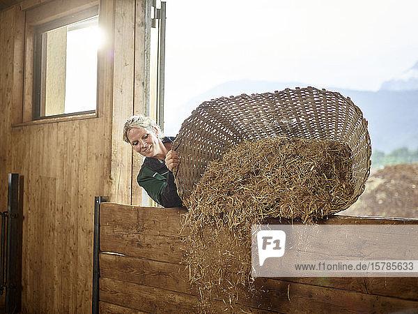 Bäuerin  die auf einem Bauernhof Stroh in die Scheune schüttet