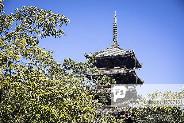 Japan  Präfektur Kyoto  Kyoto  Niedrigwinkelansicht der Yasaka-Pagode vor klarem Himmel
