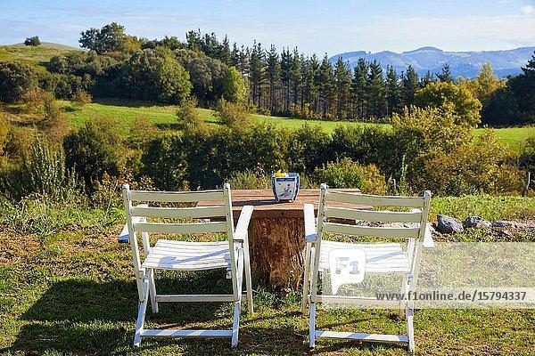 Terrace with mountain views  Apartment in rural house  Deba  Gipuzkoa  Basque Country  Spain  Europe