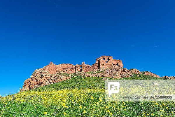 Tourist resources from Castilla-La Mancha. Cultural heritage  nature  festivals and traditions  wine and gastronomy  crafts.