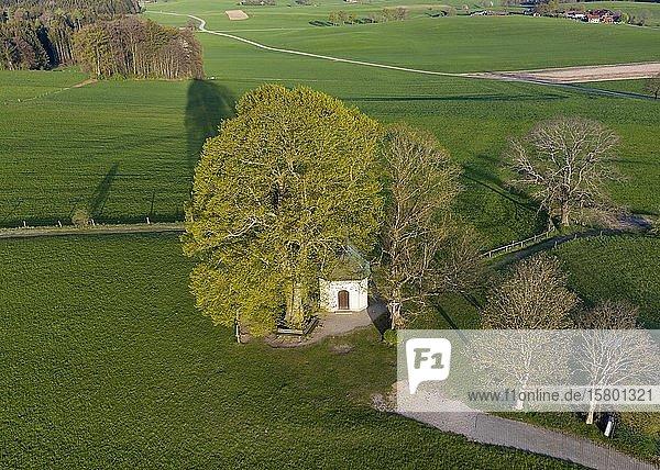 Maria-Dank-Kapelle auf Fürst-Tegernberg  Degerndorf bei Münsing  Fünfseenland  Oberbayern  Bayern  Deutschland  Europa