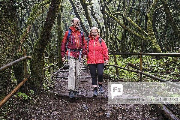 Paar wandert auf Waldweg im Lorbeerwald  Laguna Grande  Nationalpark Garajonay  La Gomera  Kanaren  Spanien  Europa