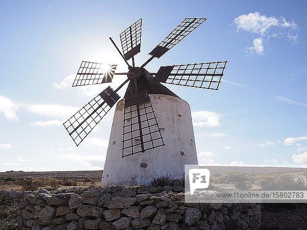Windmühle mit Sonnenstern  Fuerteventura  Kanaren  Spanien  Europa