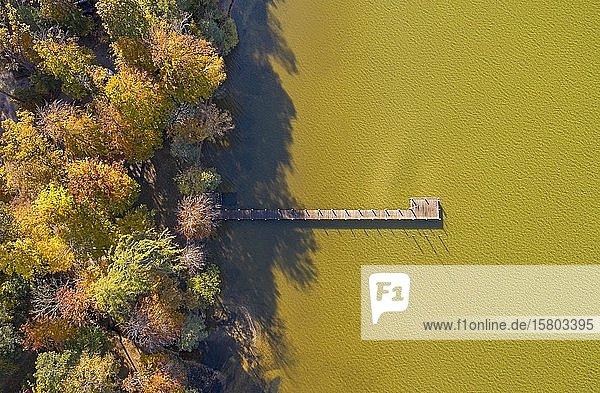 Herbststimmung am Starnberger See bei St. Heinrich  Luftbild  Fünfseenland  Oberbayern  Bayern  Deutschland  Europa