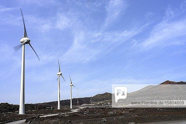 Windkrafträder zur Stromerzeugung  La Palma  Kanaren  Spanien  Europa