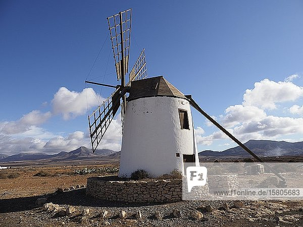 Windmühle  Fuerteventura  Kanaren  Spanien  Europa