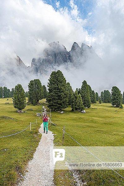 Junge Frau  Wanderin auf einem Wanderweg  hinten Sass Rigais  Parco Naturale Puez Odle  Südtirol  Italien  Europa