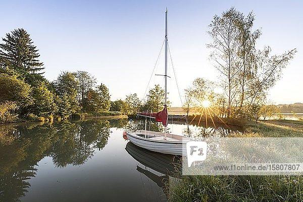 Sonnenaufgang mit Segelboot in Lechbruck  Allgäu  Bayern  Deutschland  Europa