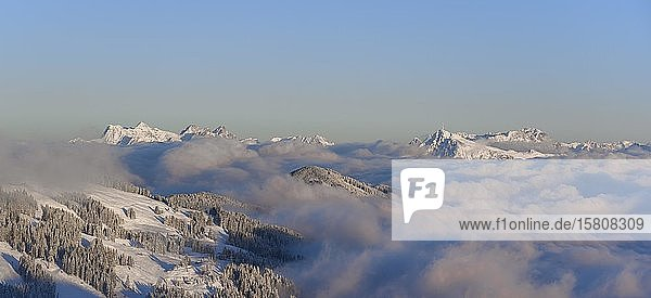 Blick von der Hohen Salve  rechts Kitzbühler Horn  links Loferer Steinberge  Bergpanorama im Winter  Berggipfel ragen über Wolkendecke  Skigebiet SkiWelt Wilder Kaiser Brixental  Brixen im Thale  Tirol  Österreich  Europa