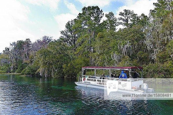 Flusslandschaft  Taucherboot  Bäume mit Louisianamoos oder Spanisches Moos (Tillandsia usneoides)  Rainbow River  Rainbow Springs State Park  Dunnelon  Florida  USA  Nordamerika