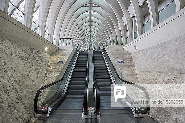Rolltreppen im Bahnhof von Lüttich  Gare de Liège-Guillemins  entworfen vom spanischen Architekten Santiago Calatrava  Lüttich  Wallonische Region  Belgien  Europa