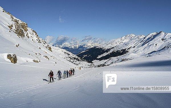 Gruppe an Skitourengehern  Aufstieg zur Geierspitze  Wattentaler Lizum  Tuxer Alpen  Tirol  Österreich  Europa