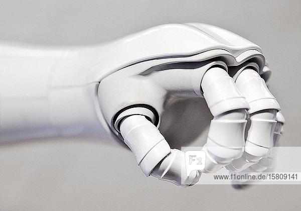 Hand des humanoiden Roboter Pepper  Deutschland  Europa
