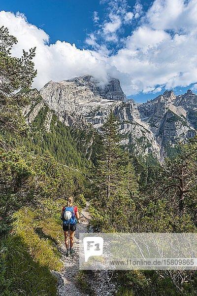 Wanderin auf einem Wanderweg zum Rifugio San Marco  San Vito di Cadore  Belluno  Italien  Europa