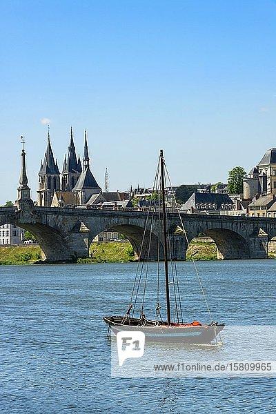 The Cessart bridge and Chateau de Saumur on river Loire  Maine et Loire  Pays de la Loire  France  Europe