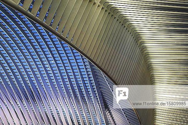 Dachdetail im Bahnhof von Lüttich  Gare de Liège-Guillemins  entworfen vom spanischen Architekten Santiago Calatrava  Nachtaufnahme  Lüttich  Wallonische Region  Belgien  Europa