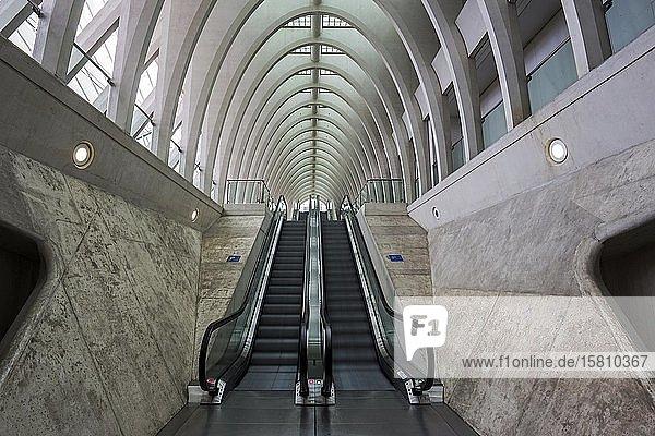 Rolltreppen im Bahnhof von Lüttich,  Gare de Liège-Guillemins,  entworfen vom spanischen Architekten Santiago Calatrava,  Lüttich,  Wallonische Region,  Belgien,  Europa