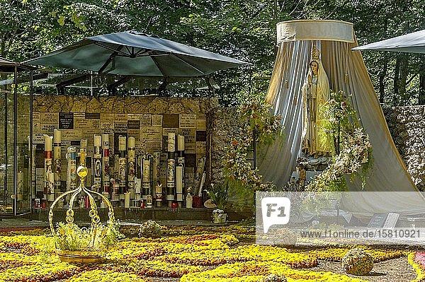 Madonnenstatue  Blumenteppich mit goldener Marienkrone  Opferkerzen  Mariengrotte im Wald  Wallfahrtsort Maria Vesperbild  Ziemetshausen  Günzburg  Schwaben  Bayern  Deutschland  Europa
