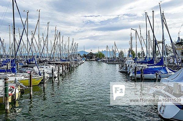 Segelboote im Yachthafen Seebruck  hinten Vereinshaus des Seebrucker Regatta-Verein  Seeon  Chiemsee  Chiemgau  Oberbayern  Bayern  Deutschland  Europa