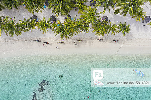 Tourists riding horses on palm-fringed beach  aerial view  Le Morne Brabant peninsula  Black River  Mauritius  Indian Ocean  Africa