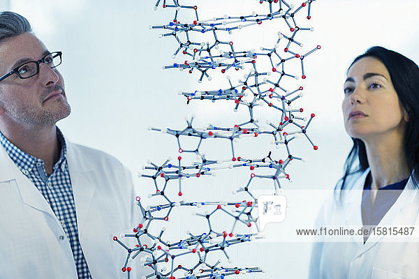 Serious scientists examining hanging molecular structure