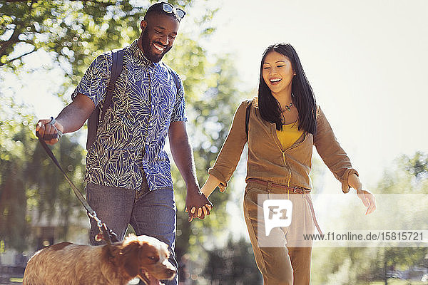 Smiling young couple walking dog in sunny park