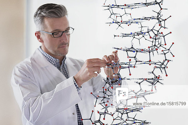 Science teacher assembling molecule model in laboratory classroom