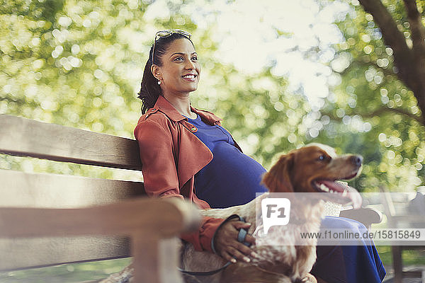 Smiling pregnant woman with dog sitting on park bench