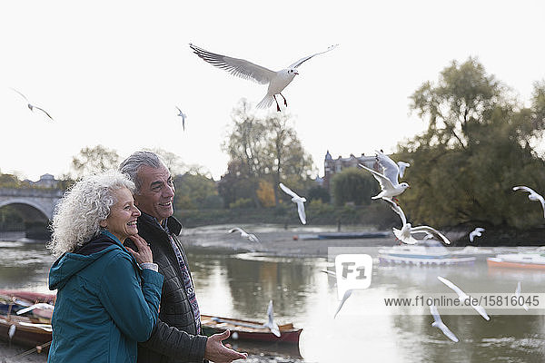 Affectionate senior couple watching birds flying at river