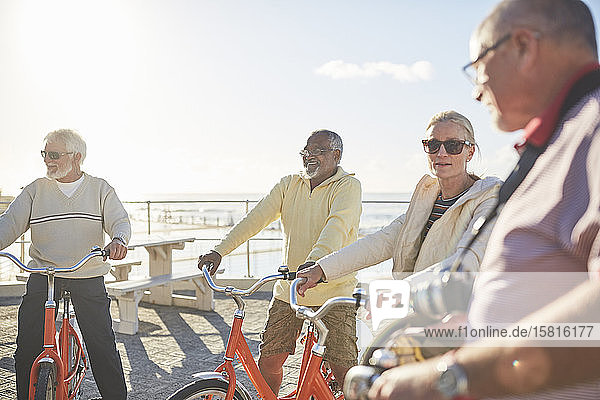 Active senior friend tourists bike riding on sunny boardwalk