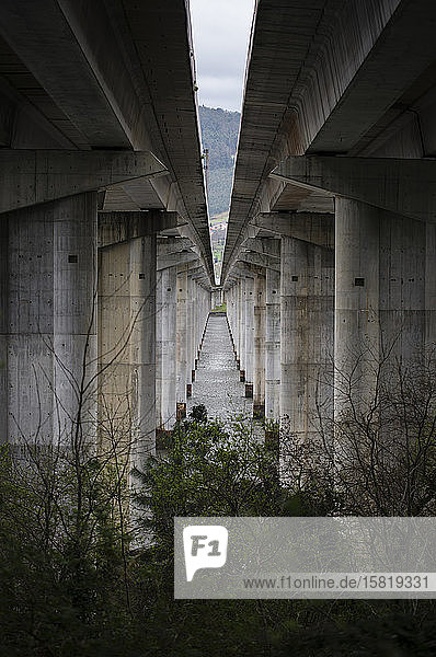 Pillars of a highway bridge in abandoned environment