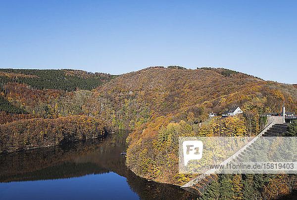 Deutschland  Nordrhein-Westfalen  Obersee umgeben von bewaldeten Hügeln im Herbst