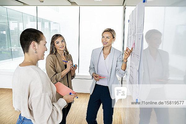 Leitende Geschäftsfrau leitet Workshop im Amt