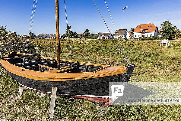 Deutschland  Mecklenburg-Vorpommern  Neuendorf  Segelboot auf Gras liegend mit weidendem Pferd und Dorfhäusern im Hintergrund