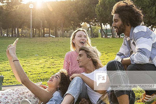Glückliche Freunde  die auf einer Wiese ein Selfie machen